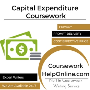 Capital Expenditure Coursework Writing Service