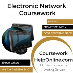 Electronic Network Coursework Writing Service