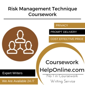 Risk Management Technique Coursework Writing Service